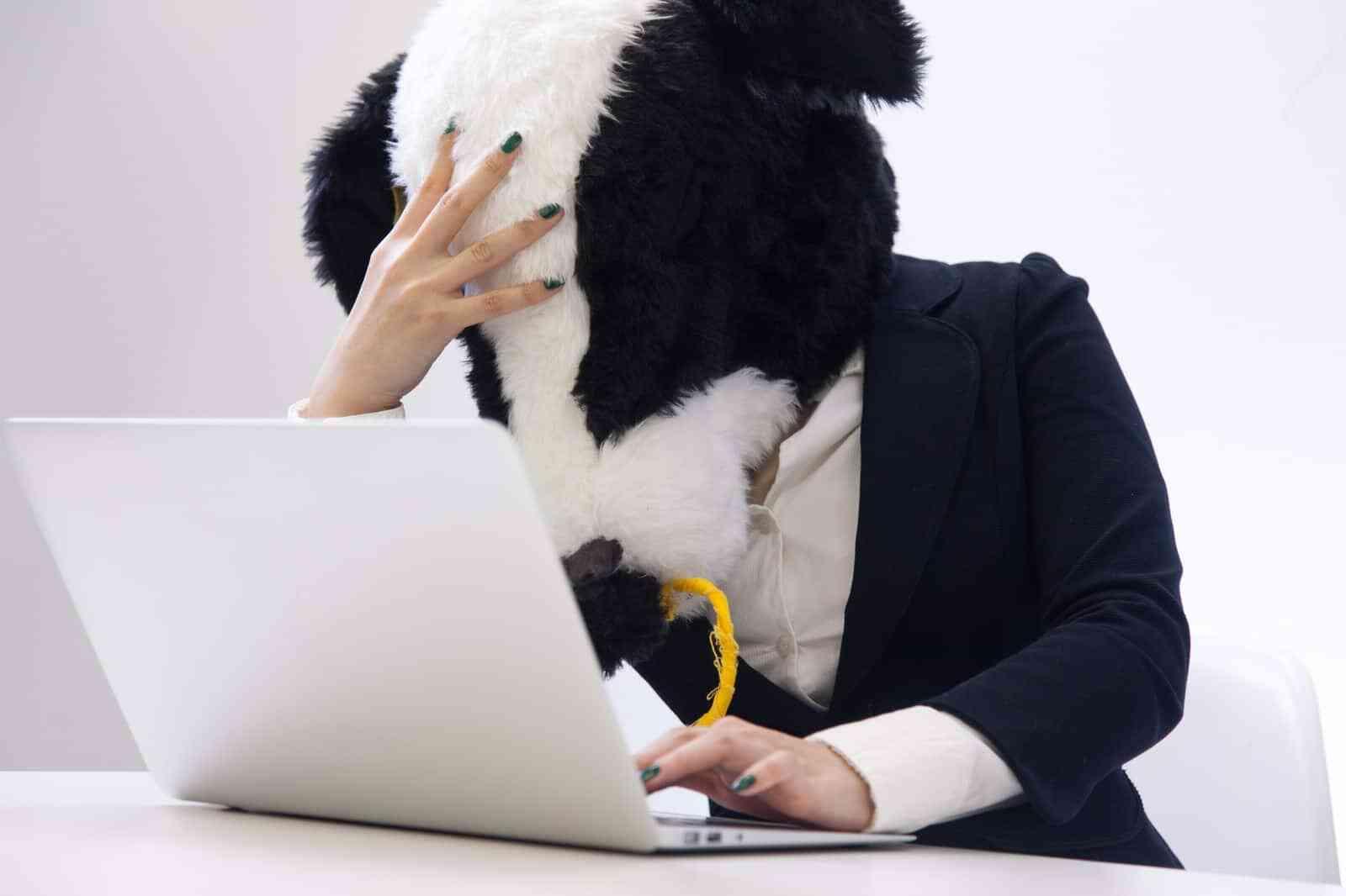 就職サイトを利用する際の注意点